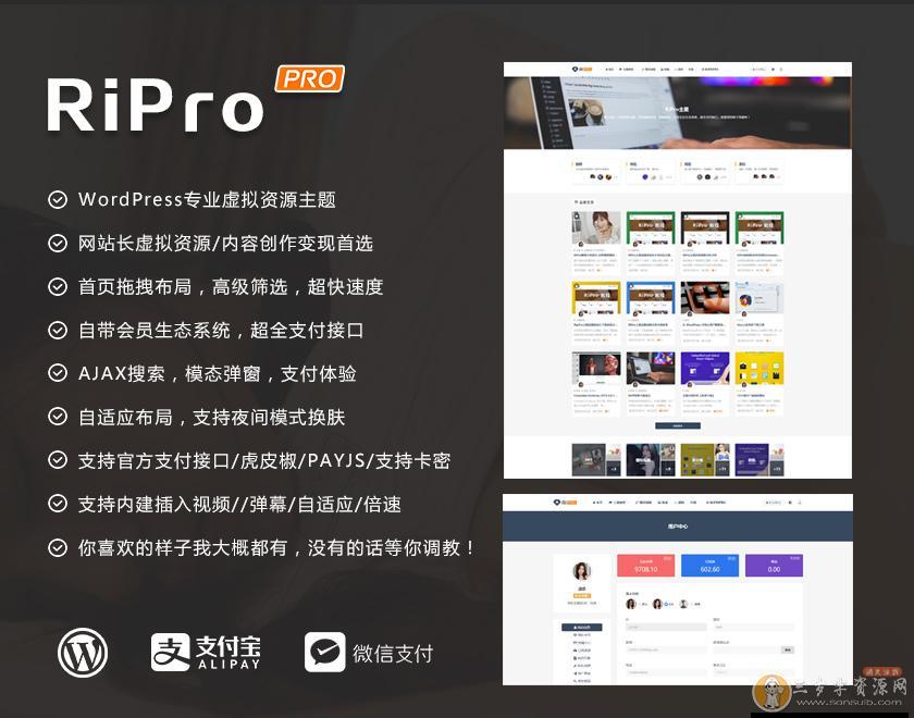 WordPress模板RiPro5.4,高级资源类博客主题日主题RiPro5.4