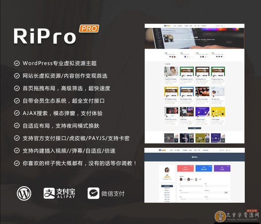 WordPress主题 RiPro 4.6 资源下载带美化包