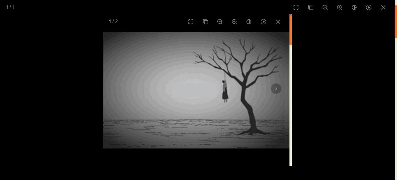 zblog图片灯箱插件 v1.0